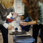 workshop puppetry ny