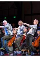 Het Orkest Groeit!